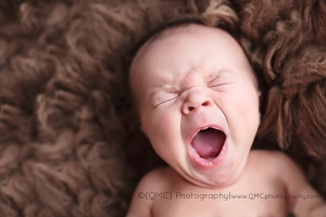 Calgary Newborn Photographer 01 300x200 Back on the wagon!