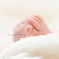 Calgary Alberta Newborn Twin Multiple Photographer 2182 200x200 Portfolio